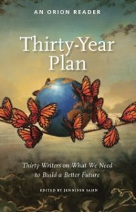 Thirty Year Plan - Cover